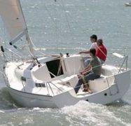 Barca a vela Jeanneau Sun 2500 (2009)-1