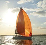 Barca a vela Hanse 345 (2014)-1