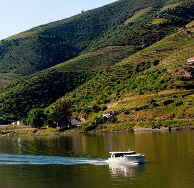 Imbarcazione a motore Greenline 40 - 2012 (raddobbo 2020)-2