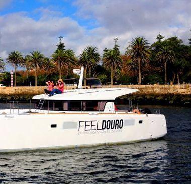Catamarano Lagoon 39 - 2013 (raddobbo 2020)-2