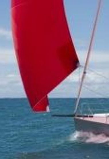 Barca a vela Pogo Pogo 30 QR (2014)-3