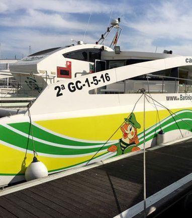 Catamaran Custom Built (2016) (3)