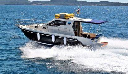 Motor boat Sas Vektor 950 (2015)