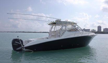Motor boat Hydra-Sports 3300 VX (2008)