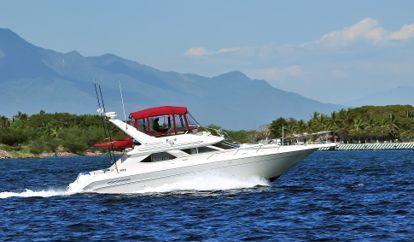 Motor boat Sea Ray 460 (2012)