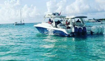 Motor boat Hydra-Sports 3300 VX (2004)