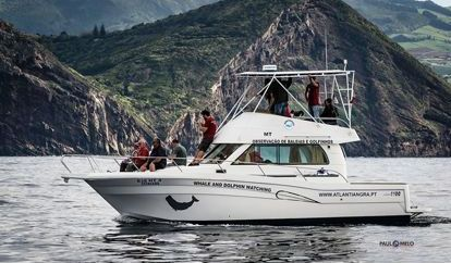 Motor boat Custom Built (2000)