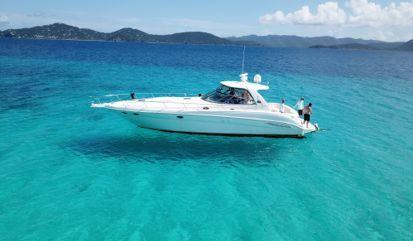 Motor boat Sea Ray Sundancer 460 (2002)