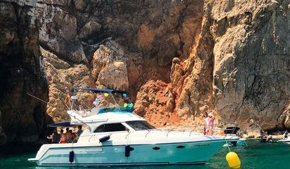 Motor boat Astinor 12.5 (2011)