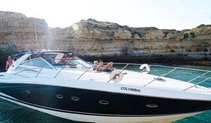 Motor boat Sunseeker Portofino 53 (2013)