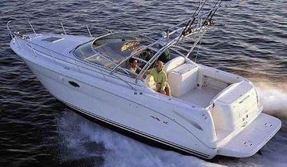 Motor boat Sea Ray 290 (2006)