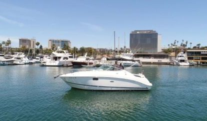 Barco a motor Sea Ray 260 Sundancer (2013)