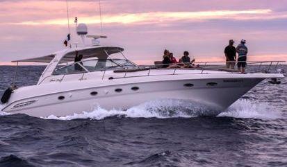 Motor boat Sea Ray 460 (2001)