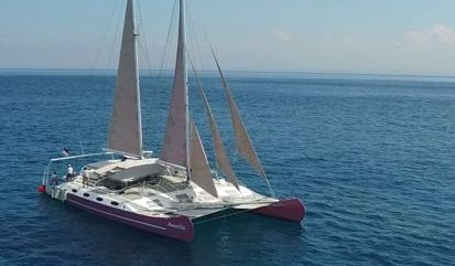 Catamaran Custom Built (2012)