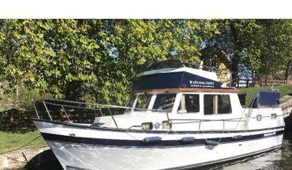 Motor boat Husky Dane (2021)