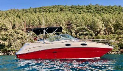Motor boat Sea Ray 240 Sundancer (2006)