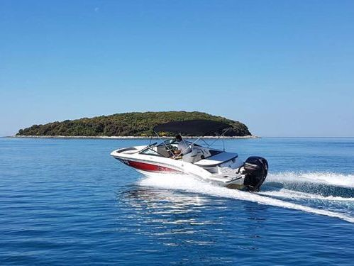 Speedboat Sea Ray 19 SPX (2018)