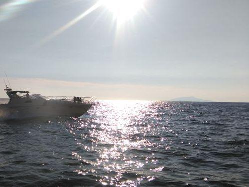 Imbarcazione a motore Raffaelli Shamal 40 (2005)
