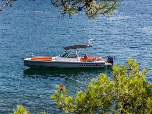 Motor boat Axopar 28 TT (2015)