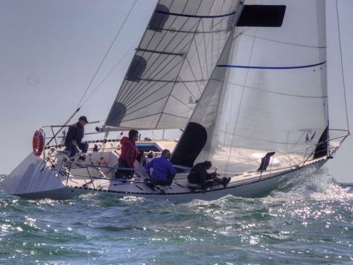 Segelboot Duck 31 (2012)