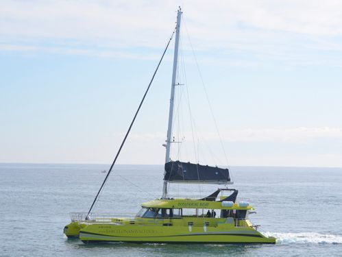 Catamaran Custom Built (2018)