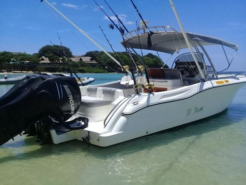 Motor boat Legend 28 (2014)
