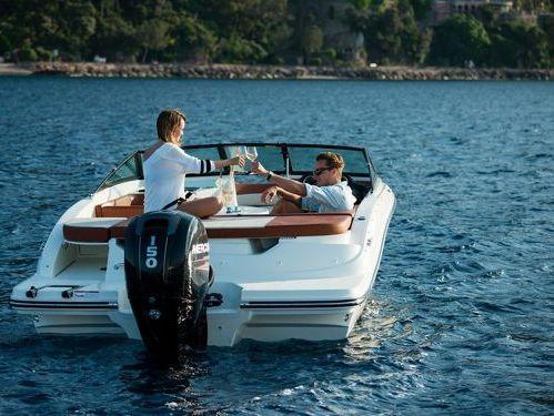 Sportboot Sea Ray 190 Sport (2015)