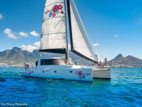 Katamaran Scape Yachts 39 (2015)