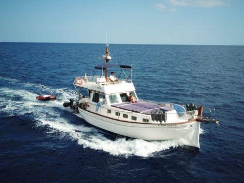 Motor boat Menorquin 160 (2015)