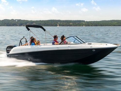 Sportboot Bayliner Element E7 (2010)