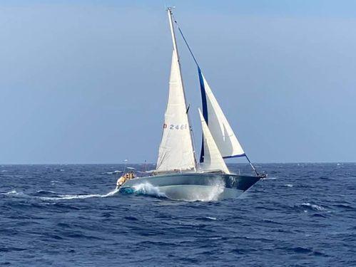 Sailboat Swan 51 (1975)