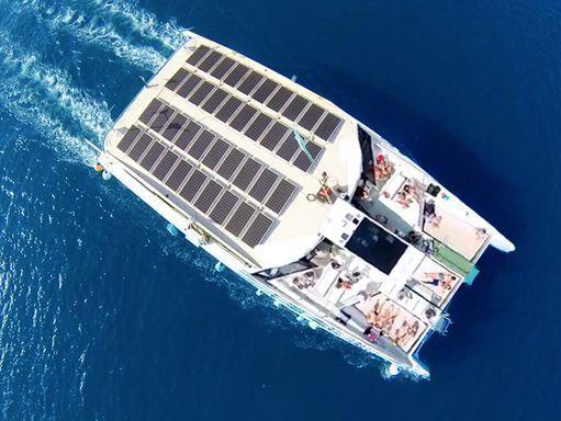 Catamaran Custom Built (2016) (0)