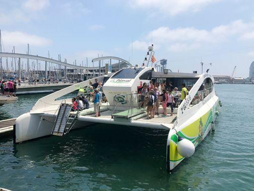 Catamaran Custom Built (2016) (2)