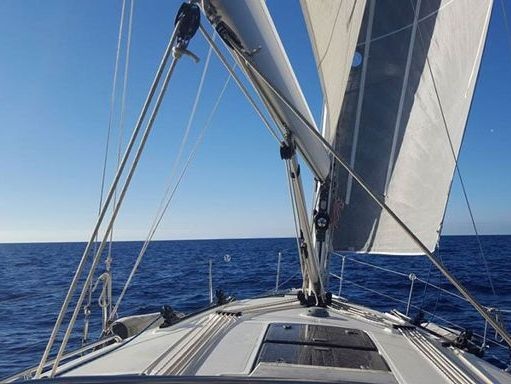 Sailboat Bavaria 36 (2012) (4)